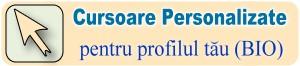 Cursoare pentru profilul dvs. personalizat!