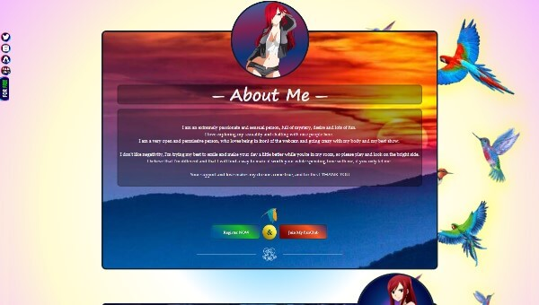 Desen 53 – profil VideoChat deja creat pentru Chaturbate
